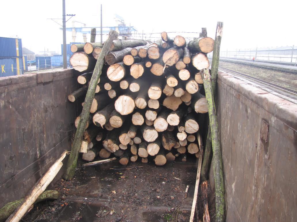 Огляд новин Західної України 23.02.2016: митники затримали контрабандистів деревини